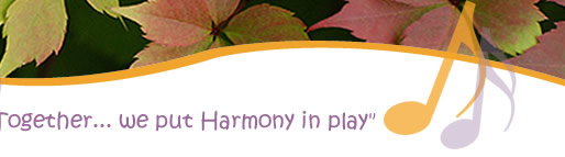 Together we put harmony in play